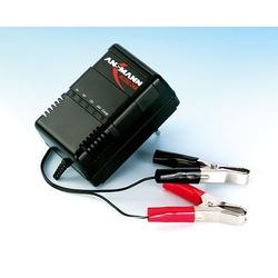 Зарядное устройство ANSMANN ALCS 2-24А 9164016